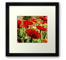 Red Flower Patch Framed Print