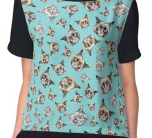 Cats in Turquoise Blue Chiffon Top