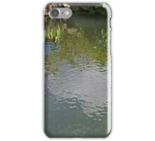 Belle Isle Conservatory Pond iPhone Case/Skin