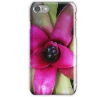Bromeliad iPhone Case/Skin