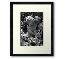 Cherub Belle Isle Conservatory BW Framed Print