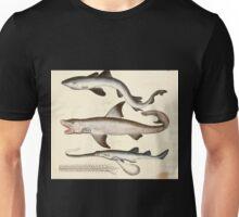 Naturgeschichte in Bildern mit erläuterndem Text E Strack 1820 Lief 4 Fish 003 Unisex T-Shirt