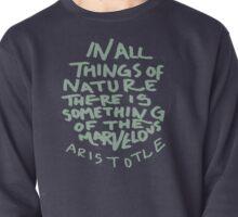 Aristotle: Nature Pullover