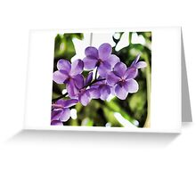Orchids For Me Greeting Card