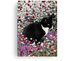 Freckles in Flowers II - Tuxedo Cat Canvas Print