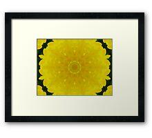 A Burst Of Lemon Framed Print