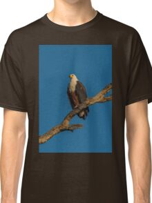 African fish eagle in afternoon light on branch Classic T-Shirt