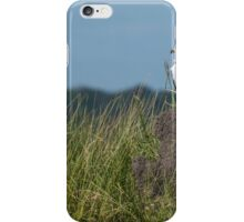 African fish eagle perched on termite mound iPhone Case/Skin