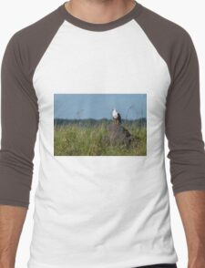 African fish eagle perched on termite mound Men's Baseball ¾ T-Shirt