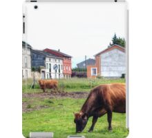 Suburban cows iPad Case/Skin