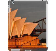 Famous iPad Case/Skin