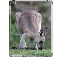 Grazing Kangaroo iPad Case/Skin