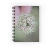 Flower seedhead macro Spiral Notebook