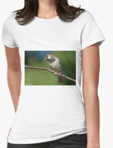 Male House Sparrow Perched in a Tree Womens Fitted T-Shirt