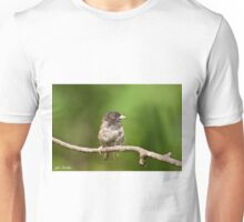 Dark Eyed Junco Unisex T-Shirt