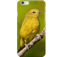 Female Yellow Warbler iPhone Case/Skin