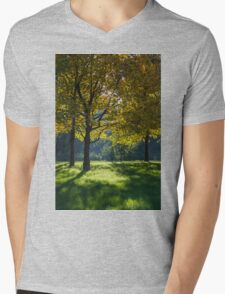tree in the park in autumn Mens V-Neck T-Shirt