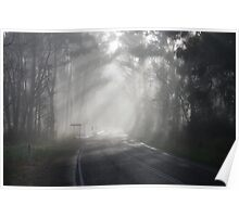 Foggy Pheasant Creek Morning Poster