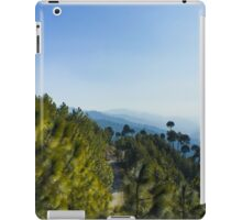 The path and lonely tree iPad Case/Skin