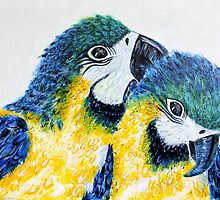 Two Macaw Parrots by Kathie Nichols