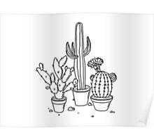 Hand Drawn Cacti Poster