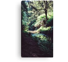 A Stream of Dreams Canvas Print