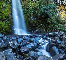 Dawson Falls by Joel Bramley