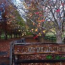 Sarabah House by Digby