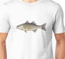 Striped Bass (Morone saxatilis) Unisex T-Shirt