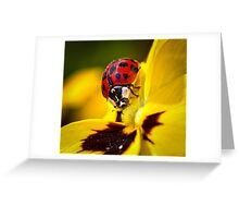 Red on Yellow..! Greeting Card