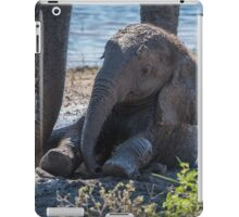 Baby elephant sitting in mud beside mother iPad Case/Skin