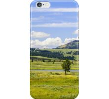 Yellowstone National Park iPhone Case/Skin