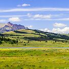 Yellowstone National Park by Caleb Ward