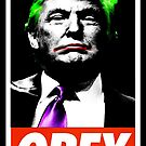 Mr President?!? by GraphicMonkey