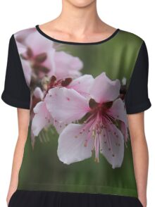 Peach Blossoms Chiffon Top