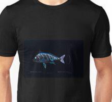 Natural History Fish Histoire naturelle des poissons Georges V1 V2 Cuvier 1849 130 Inverted Unisex T-Shirt