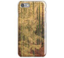 Golden Autumn Trees iPhone Case/Skin