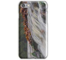 Autumn Stream iPhone Case/Skin