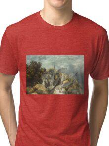 Fish Frenzy Tri-blend T-Shirt