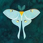 Luna Moth by Scott Partridge