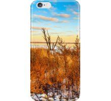 Illinois Sunset At Emiquon National Wildlife Refuge iPhone Case/Skin