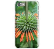 Orange Flower on a Stem iPhone Case/Skin