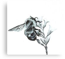 Monochrome Bee Canvas Print