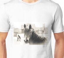 New Forest Ponies Unisex T-Shirt