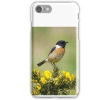 Stonechat on Gorse iPhone Case/Skin