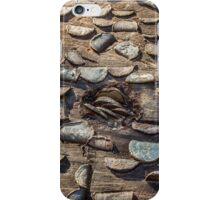 The Money Tree iPhone Case/Skin