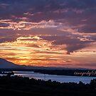 Summer Sunset by Susan Vinson