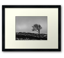 Wind Bent Tree Framed Print