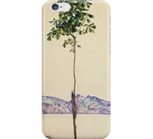 Egon Schiele - Little Tree. Schiele - forest view. iPhone Case/Skin