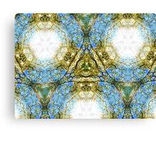 Earthbound Supernova Canvas Print